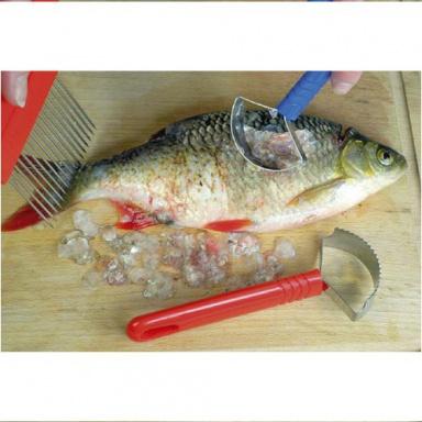 škrabka na ryby